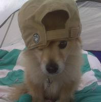 charlie-hat.jpg