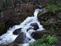 m-creek.jpg