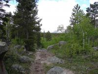 m-trail.jpg