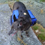 Ackey at her best - backpacking the trails