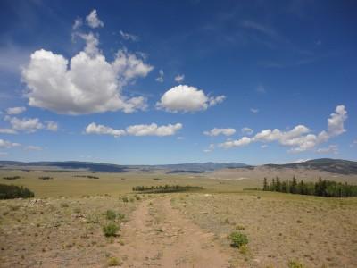 Desert section